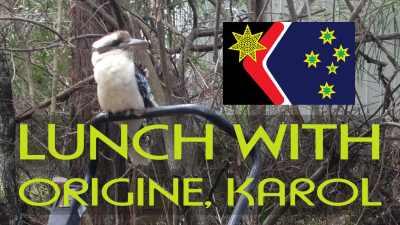 karol the kookaburra